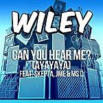 Wiley Can You Hear Me? (Ft. Skepta, Jme & Ms D)