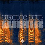 Silicone Soul Smokestak