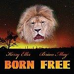 Brian May Born Free