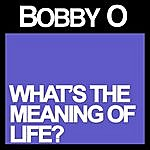 Bobby-O What's The Meaning Of Life?