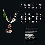 Andrew Poppy Shiny Floor Shiny Ceiling