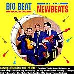 The Newbeats Big Beat Sounds