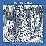 David Spalding Sharp Temple Forest