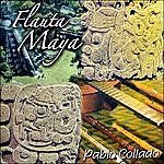 Pablo Collado Flauta Maya