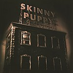 Skinny Puppy The Process