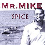Mr. Mike Spice