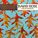 David Rose Autumn Leaves
