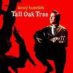 Dorsey Burnette Tall Oak Tree
