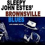 Sleepy John Estes Brownsville Blues