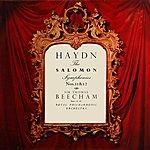 Royal Philharmonic Orchestra Haydn The Salomon Symphonies