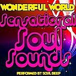 Soul Deep Wonderful World: Sensational Soul Sounds