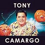 Tony Camargo Tony Camargo