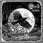 Bird Shadows (The Remixes)
