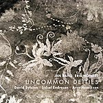 David Sylvian Uncommon Deities