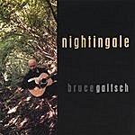 Bruce Gaitsch Nightingale