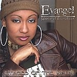 Evangel Stages Of The Walk