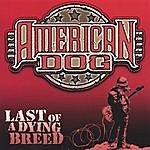American Dog Last Of A Dying Breed