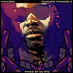 Naledge Chicago Picasso 2