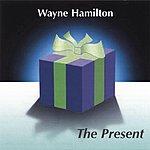 Wayne Hamilton The Present