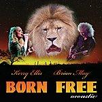 Brian May Born Free (Acoustic Version)