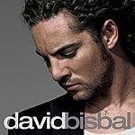 David Bisbal David Bisbal (Standard Album Release)