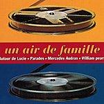 Autour De Lucie Un Air De Famille