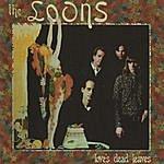 Loons Love's Dead Leaves