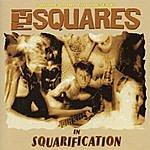 The Squares Squarification