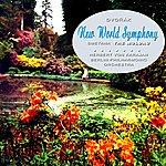 Berlin Philharmonic Orchestra New World Symphony