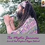 Mystic Jammers Live At New England Reggae Festival