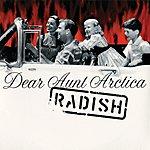 Radish Dear Aunt Arctica