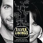 Stevie Wonder Silver Linings Playbook