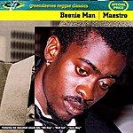 Beenie Man Maestro