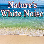 Nature Sounds Nature's White Noise - Sounds Of Nature