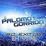 Palomo 20 Exitos En Vivo