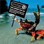The Prodigy The Added Fat Ep