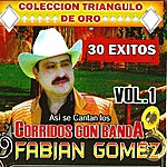 Fabian Gomez 30 Exitos Vol.1