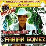 Fabian Gomez 30 Exitos Vol.2