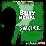 Busy Signal Smoke - Single