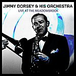 Jimmy Dorsey & His Orchestra Live At The Meadowbrook