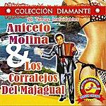 Aniceto Molina 20 Temas Inolvidables