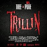 Tree Trillin