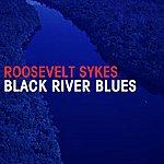 Roosevelt Sykes Black River Blues