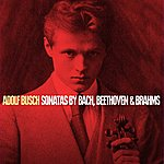 Adolf Busch Sonatas By Bach, Beethoven & Brahms