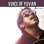 Yuvan Shankar Raja Voice Of Yuvan