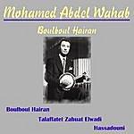 Mohamed Abdel Wahab Boulboul Hairan