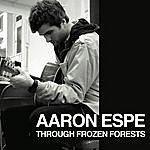 Aaron Espe Through Frozen Forests Ep