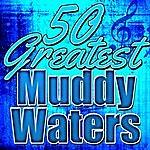 Muddy Waters 50 Greatest Muddy Waters