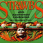 The Strawbs 40th Anniversary Celebration - Vol 1: Strawberry Fayre