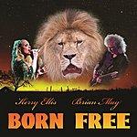 Brian May Born Free (Feat. Kerry Ellis)
